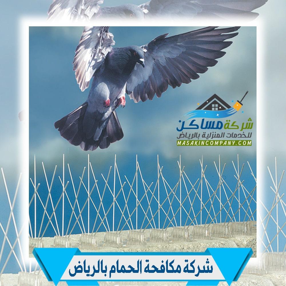 مكافحة الحمام في الرياض